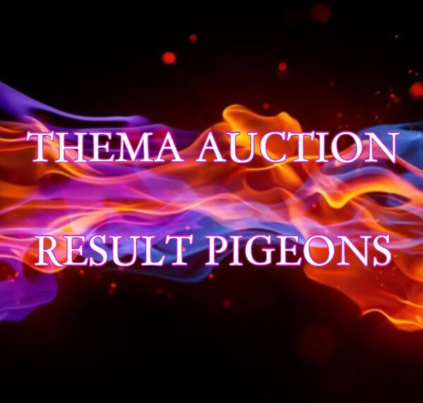 Thema Auction: Result Pigeons